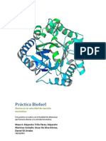 Biofuel, Enzimas. Informe de Lab Oratorio.