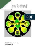 Informe Biofuel Acabado Sergio Isai