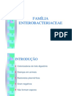aula enterobacteriaceae rosana