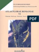 Atlas Florae Romaniae VI