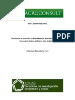 Decisiones de Inversion en Empresas Con Dolarizacion Financiera