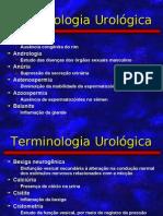 Terminologia Urológica