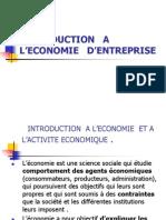 INTRODUCTION   A  L'ECONOMIE   D'ENTREPRISE bis
