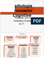Psihologia Proceselor Cognitive