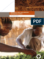 Investing in Trees and Landscape Restoration in Africa