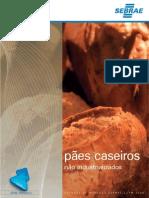 relatório completo - estudo pães caseiros