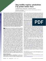 Beiyan Nan et al- Myxobacteria gliding motility requires cytoskeleton rotation powered by proton motive force