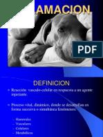 04b - Inflamacion II, Reaccion