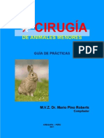 Texto Guia de Cirugia de Animales Menores