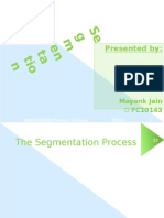 1 Segmentation