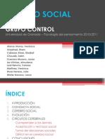 7. Grupo Control