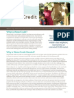 Water Credit Executive Summary (June 2011) FINAL