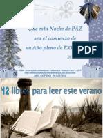 FELICES FIESTAS... PROSPERO AÑO 2012!
