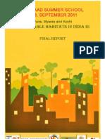 Final Report 2011