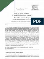 Radner & Shepp 1996 - Risk vs Profit Potentials a Model for Corporate Strategies (JEDC)