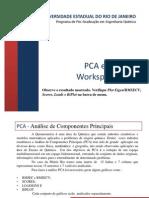 PCA e HCA-Rio