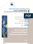 Human Rights Report for the European Parliament