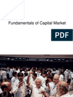 Capital Market Basics 734