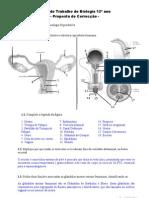 01 Fichabio Anatomia Reprod Correccao
