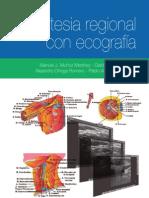 Anestesia Regional Con Eco