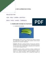 Defectos Del Banano