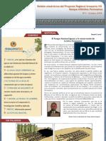 Boletín electrónico del Proyecto Regional Araucaria XXI.nº 4-2008.Misiones.Argentina