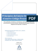 Principios Del Juicio Oral NCPP Version Final