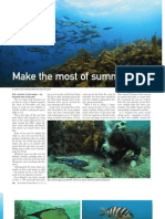 """NZ Fishing News"" diving article January 2011"