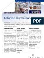 Catalytic Polymer is at Ion
