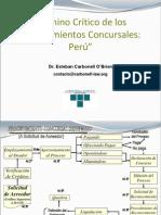 CAMINO CRITICO DE LOS PROCEDIMIENTOS CONCURSALES PERÚ