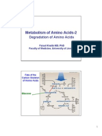Amino Acid Metabolism 3rd Handout