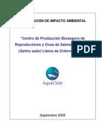 DIA_Proyecto_Pargua