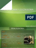 PEROXISOMA Y GLIOXISOMA