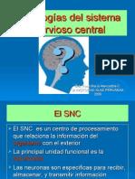 Patologias Del Sistema Nervioso Central[2]