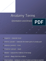 Anatomy Orientation and Directional Terms