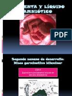 PLACENTA Y LÍQUIDO AMNIÓTICO1