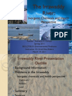 Irrawaddy River Inorganic Chemicals and Health Perspective