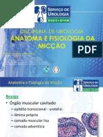 Anatomia e Fisiologia Vesical