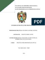 Informe de Practicas Pre Profesionales Unsch Dante Juan Bron