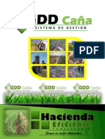 brochure software GDDCAÑA