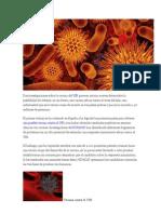 Dos Investigaciones Sobre La Vacuna Del VIH Parecen Arrojar Nuevos Datos Sobre La Posibilidad de Obtener