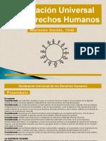 Declaracion Universal de Los Derechos Humanos 30