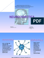 La Neurodidactica