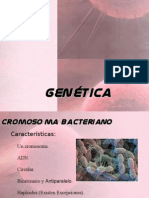 Codigo Genetico y ADN
