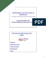 Bioenergetics 1 Handouts