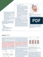 APUNTE 1 Fisiología-Generalidades Cardiovascular