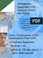 Manajemen Spesimen CSS, Sputum, Uretra Dan Penis