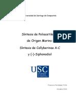 PhD Dissertation-2004-Fernández-Trillo
