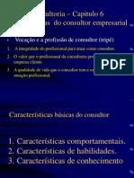 Consultoria Cap. 6