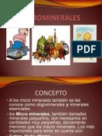 Micro Miner Ales